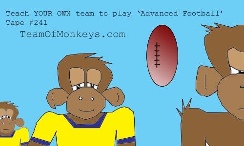 football monkeys